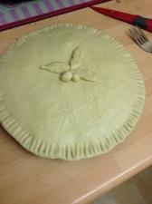 Home Made Venison Pie