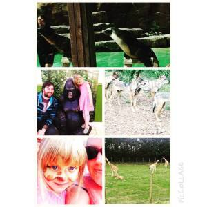 Our day in pictures at Blackpool Zoo